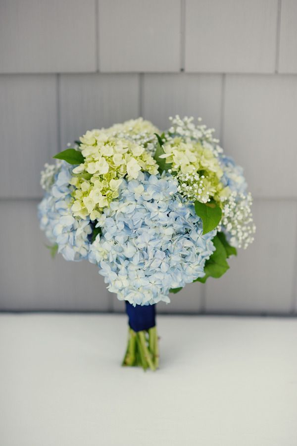 let's learn about flowers: hydrangea edition | planning it all: