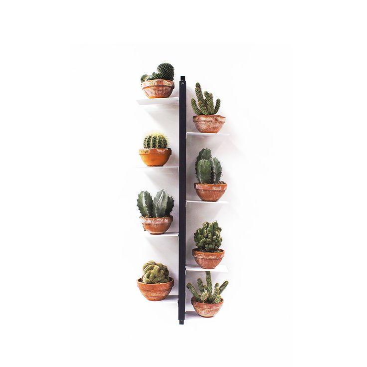 Articolo: FLSO105NEZia Flora e' un porta vasi verticale che puo' essere fissato sospeso a parete. Le mensole sono alternate sulle due facce del sostegno e intercalate ad altezze variabili di 15cm. Struttura, basamento e testata sono in massello di faggio naturale o tinto nero. Le mensole sono in acciaio verniciato con polveri epossidiche di colore bianco. Sia la ceratura per i modelli in faggio naturale che la ceratura e la tinta per i modelli in nero impiegano solo prodotti all'acqua…