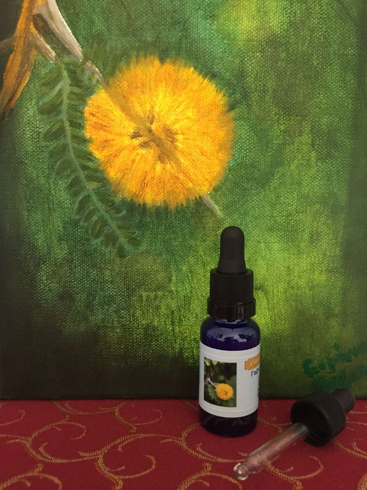 """It is the Flower Elixir that helps us to transfer our consciousness from """"me"""" to """"us"""", inserting us to the collective consciousness and the idea of Wholeness. It makes clear that we all are interconnected and the evolution of each one of us is not separated from the evolution of the others. It also helps us to end any feeling of loneliness and to enjoy our being in life and our contribution to it, as an important member. Help in a bottle from greek nature!"""