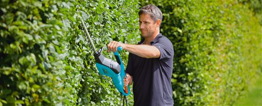 Trim your garden hedges with the top down method - March, Spring, Trees And Hedges, Tree And Shrub Care, Hedge Trimmers
