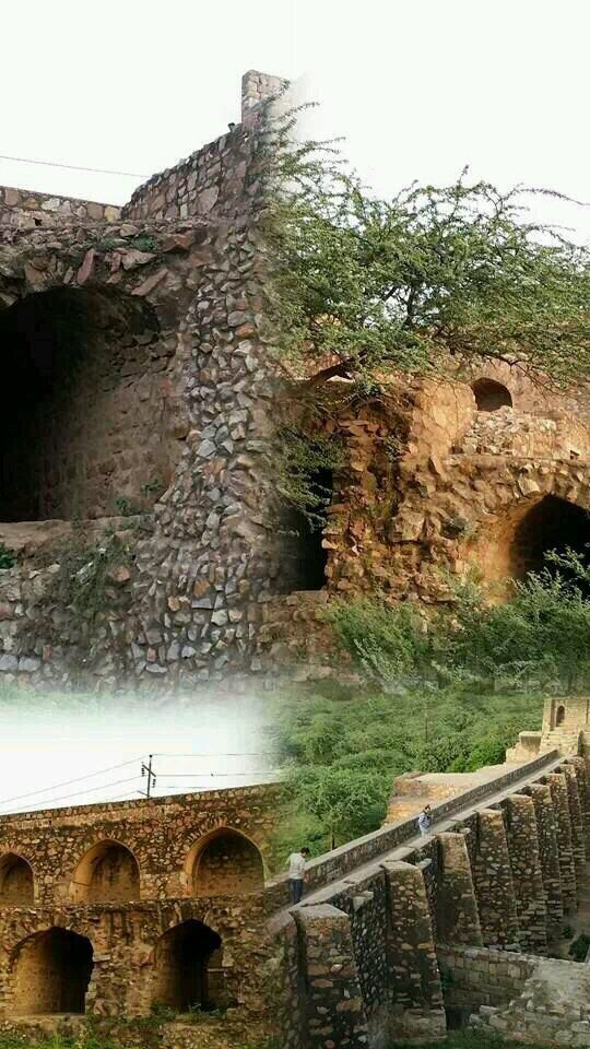 Collage of Satpula dam made by Mohd bin Tughlaq to provide water for agriculture. Saket , Delhi