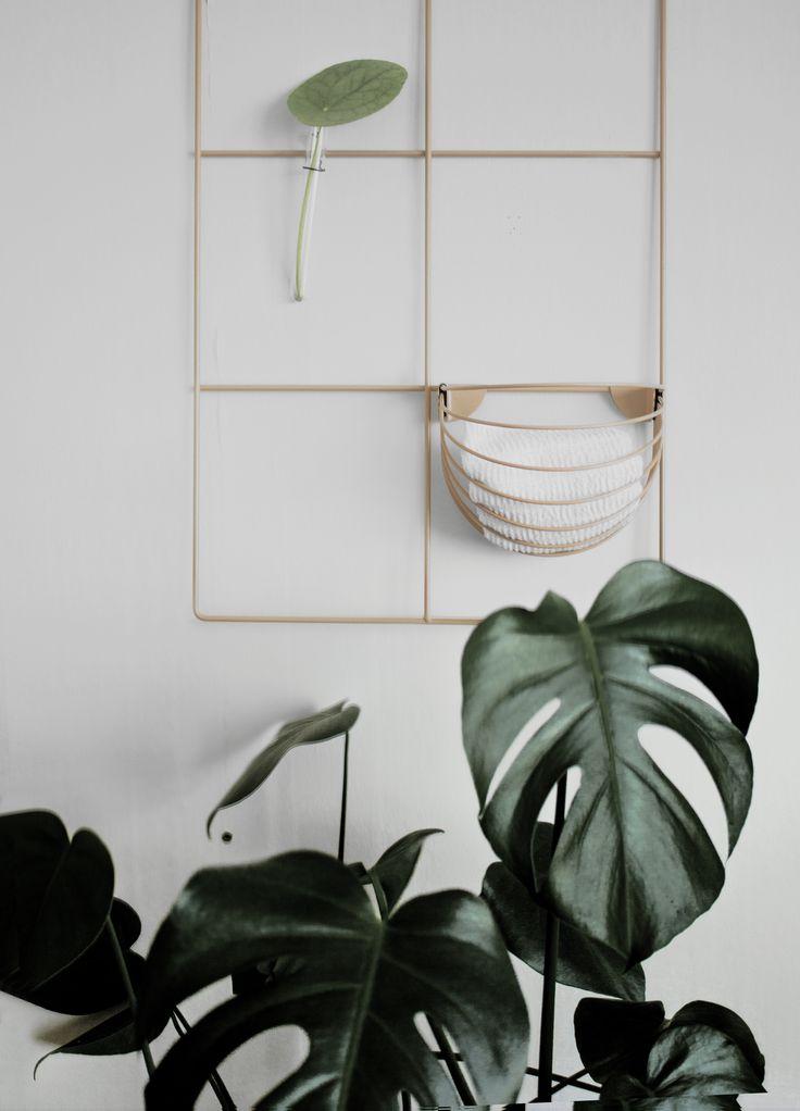 Wallment baskette | Sauna dressing room | Finnish design | Monstera in the bathroom