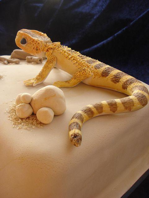 Bearded Dragon Lizard Cake! by Alison's Bakery, via Flickr