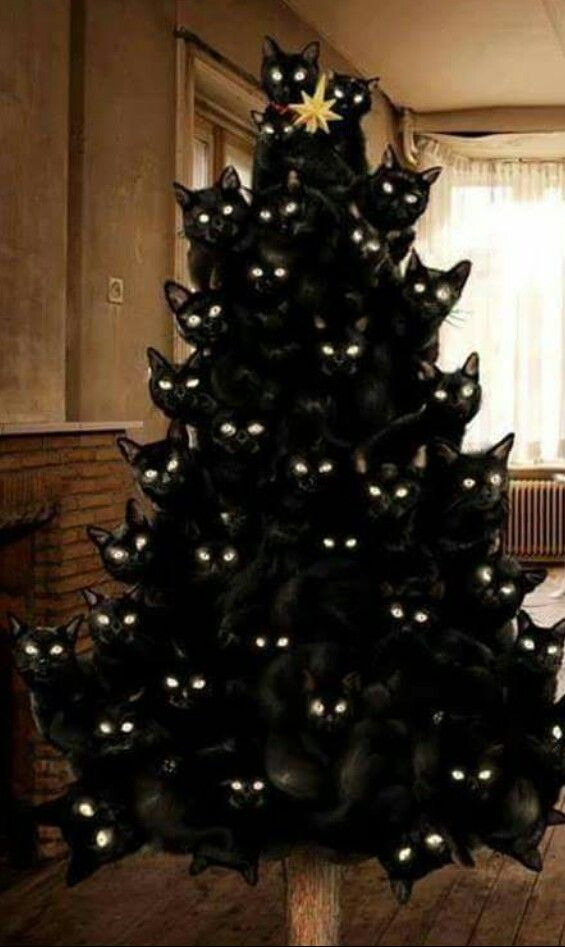 It's a Fitzmas tree!!!!