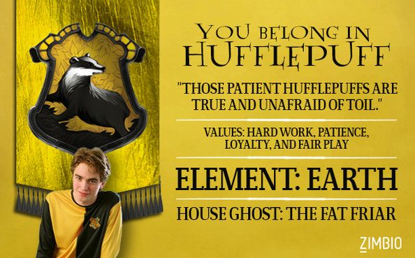 Which Hogwarts House Do You Belong In? - the pic shows the obvious result. go hufflepuff!