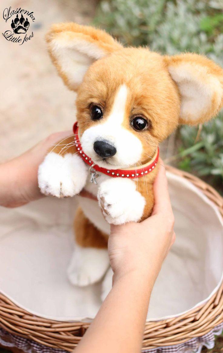 Plush Welsh Corgi Puppy | Плюшевый щенок вельш корги — Купить, заказать, игрушка, интерьер, декор, щенок, собака, корги, вельш корги, пемброк, плюш, ручная работа
