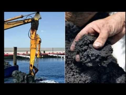 Сапропель – ценное органическое удобрение. | Для дачников.ру