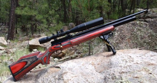 The Super-Quiet Survival Rifle That Will Always Keep You Hidden   Off The Grid News