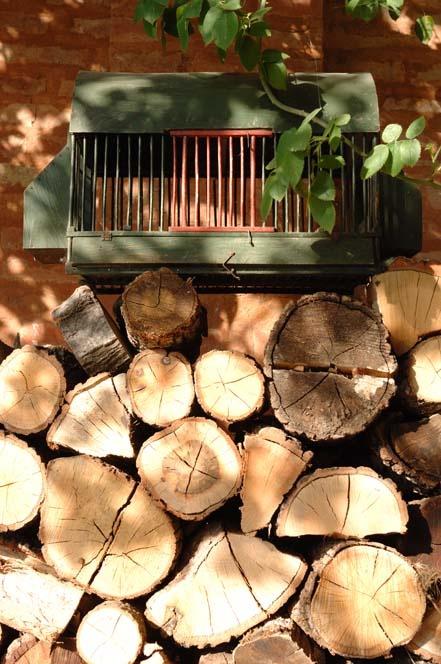 gabbia uccellini  bird cage