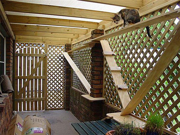 Espaço para passeio ao ar livre para gatos