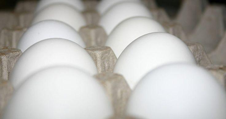 Como preparar omelete em uma panela elétrica. A omelete é prato versátil, que pode ser servido a qualquer hora do dia, e inclui ingredientes variados, de acordo com as preferências pessoais e regionais. Normalmente utiliza-se ovos, batatas e cebolas, mas, a partir dessa base, os cozinheiros podem inovar, adicionando tomates, feijão, queijo e vegetais. Experimente prepará-la em uma panela ...