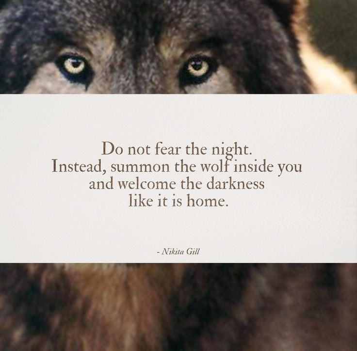 1000+ Ideas About Howling Wolf Tattoo On Pinterest