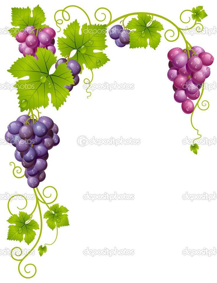 Вектор винограда рамка 3