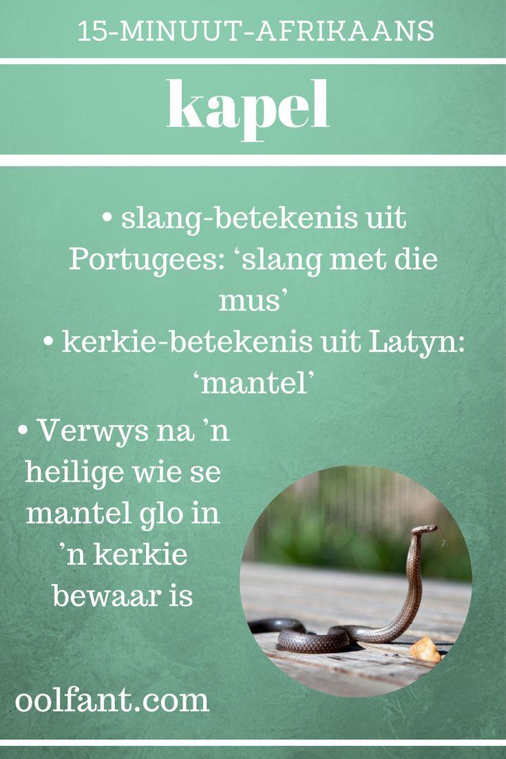 Een van die woorde uit die 15-Minuut-Afrikaans-aanlyn-kursus. Inligting kom uit die Etimologiewoordeboek van Afrikaans.