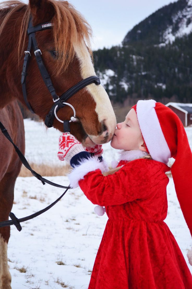 Time to start gearing up for #Christmas photos!