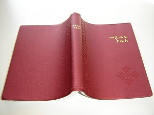 Amharic Bible Burgundy R052PL / The Bible in Amharic from Ethiopia