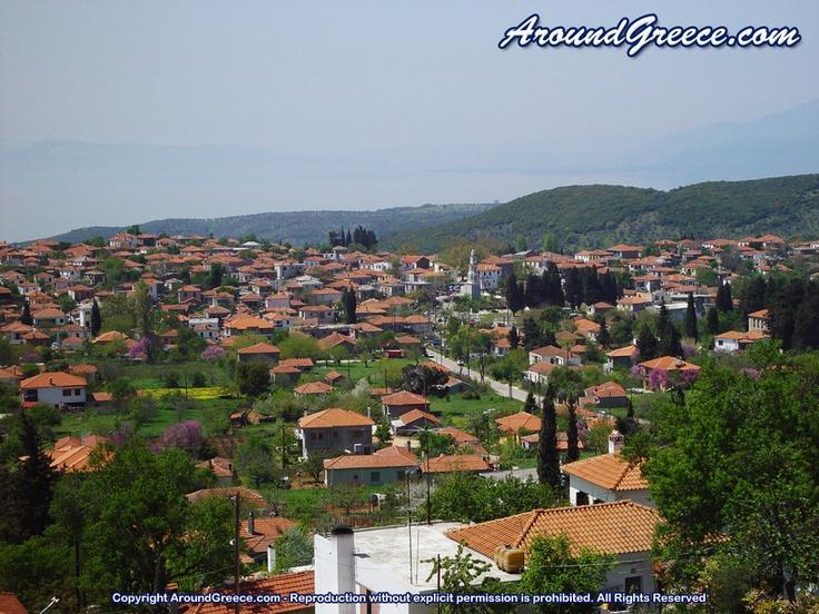 The village of Argalasti  http://www.aroundpelion.com