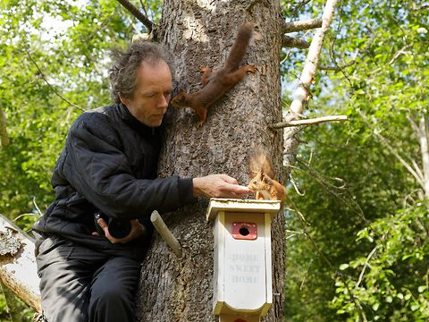 Photographer clims in tree to capture squirrel photos