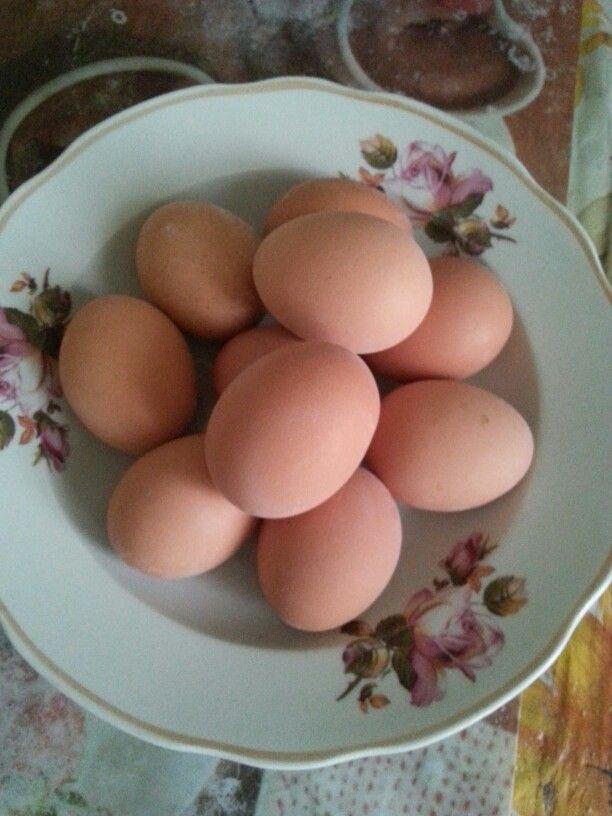 А мы уже яйца отварили :-) Когда остынут тогда будем красить :-) А в какой цвет узнаете позже :-) #пасха #пасхальныеяйца