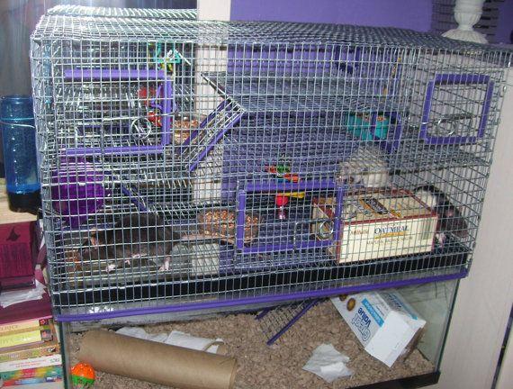 10 gallon Aquarium Topper Cage Funhouse Degu Rat Gerbil