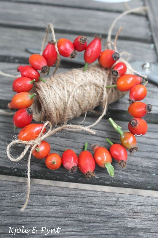 Hagebuttenkränzchen & Mini DIY * rosehip wreath