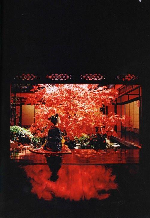 saragilmer: Sakuran (2007) by Mika Ninagawa