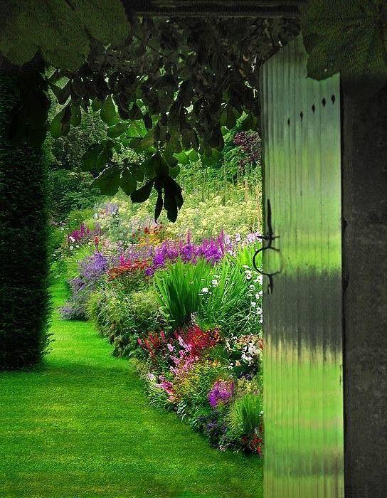 ¡Qué hermoso es cerrar los ojos, llenar los pulmones con los aromas del jardín y luego despegar los párpados y perderse en los colores¡