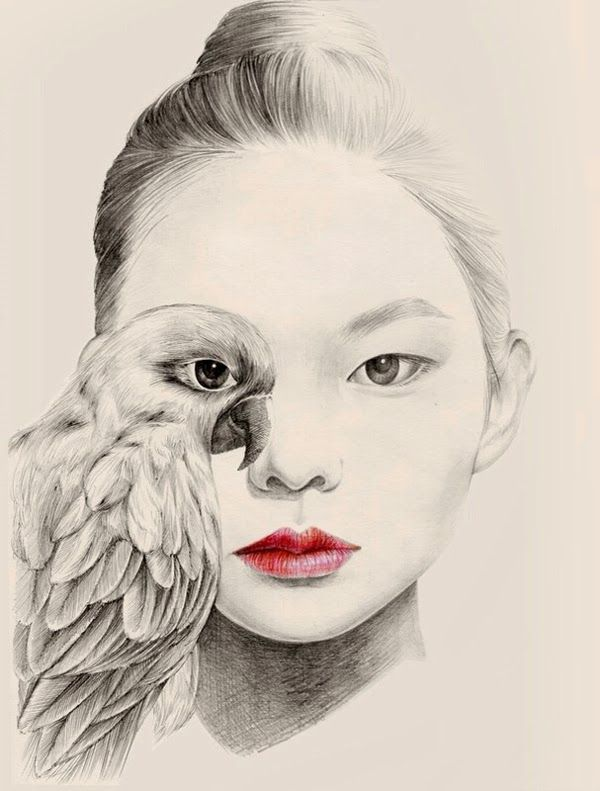 illustrations by okart