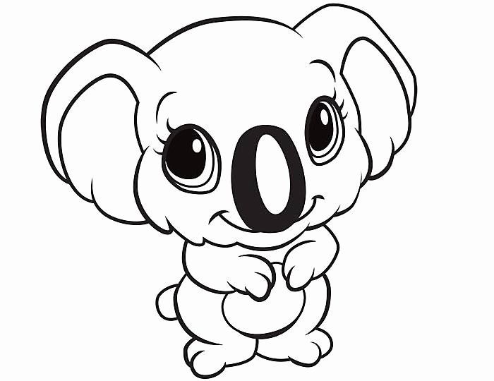 Animal Coloring Pages For Toddlers Lovely 70 Animal Colouring Pages Free Download Print In 2020 Animal Coloring Pages Animal Drawings Cute Animal Drawings