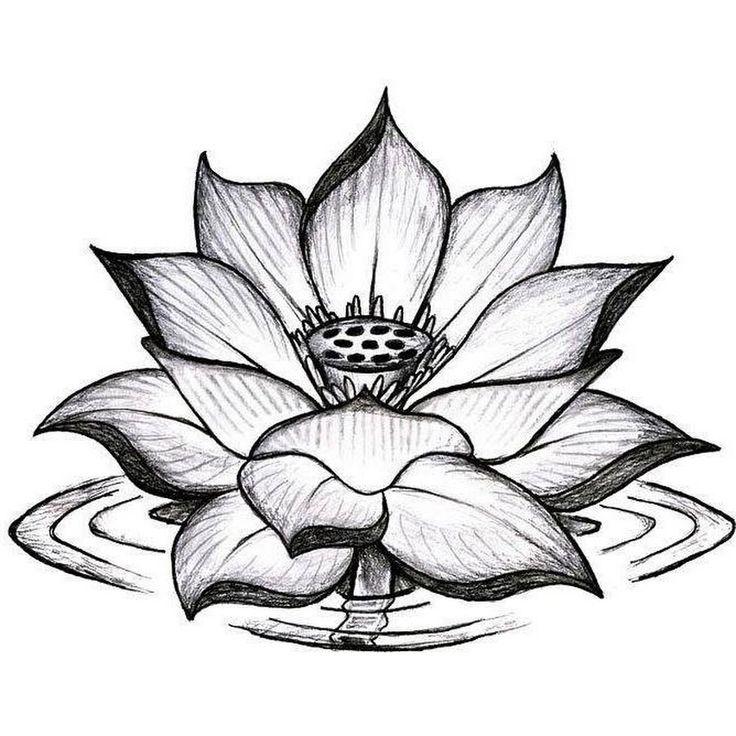 Black And Grey Lotus Flower Tattoo Design