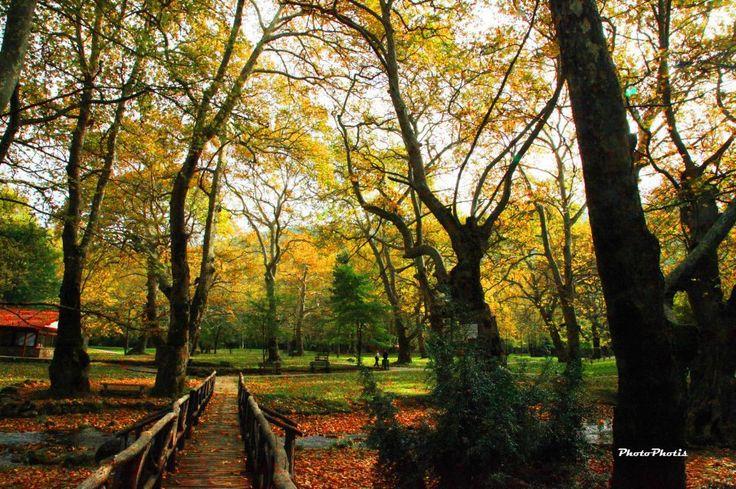 Saint Nikolas' park Naousa www.sintagigiagias.gr