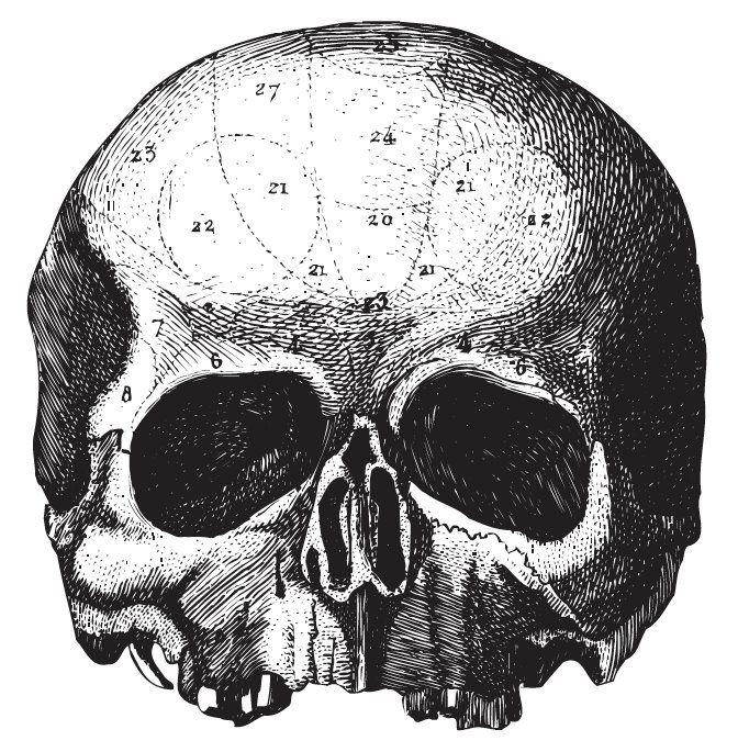Black Label Society to heavymetalowa formacja, która powstała w 1998 roku między innymi z inicjatywy gitarzysty Zakka Wylde'a