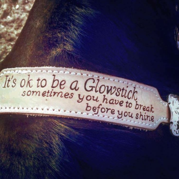 What a cute saying to remind #equestrians that it wont always be easy or perfect. #horse