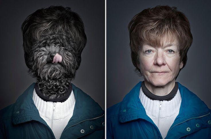 portraits de chiens habilles comme leurs maitres 5   Des chiens habillés comme leurs maîtres   Sebastian Magnani photo perruque maitre image habit chien