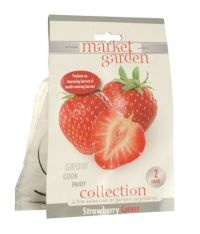 £1.00  -Market Garden Collection Vegetable Bulbs Strawberry Corona 2 Roots  Produces an impressing harvest of mouth-watering berries 2 roots included.