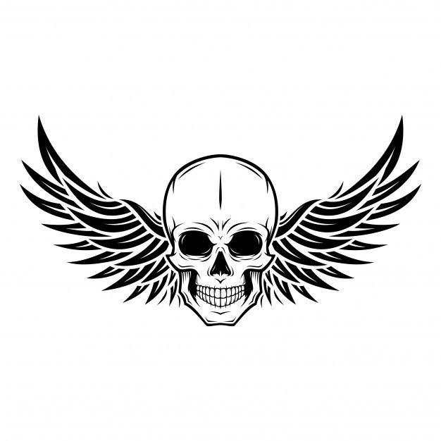 Skull Wing Illustration Premium Vector Drawings Indian Skull How To Draw Hands