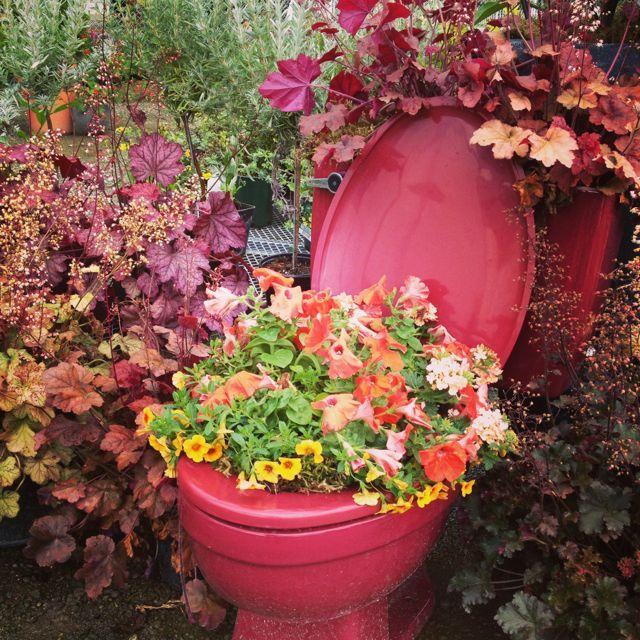103 Best Bathtub Gardens Images On Pinterest