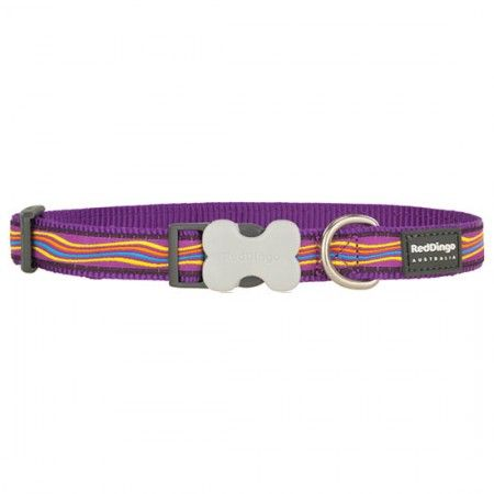 Red Dingo Dreamstream Purple Medium Dog Collar - Red Dingo dog collar Red Dingo Dog Collar Medium - globaldogshop.com