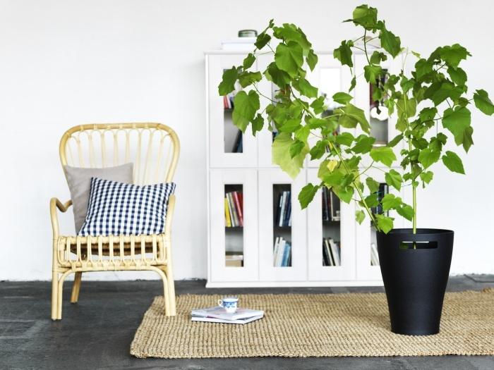 Τα φυτά εσωτερικού χώρου φέρνουν αέρα ανανέωσης και φρεσκάδας στο σπίτι. Τα μεγάλα μπορούν να λειτουργήσουν πολύ καλά και για να οριοθετήσουμε – διαχωρίσουμε έναν μεγάλο χώρο!