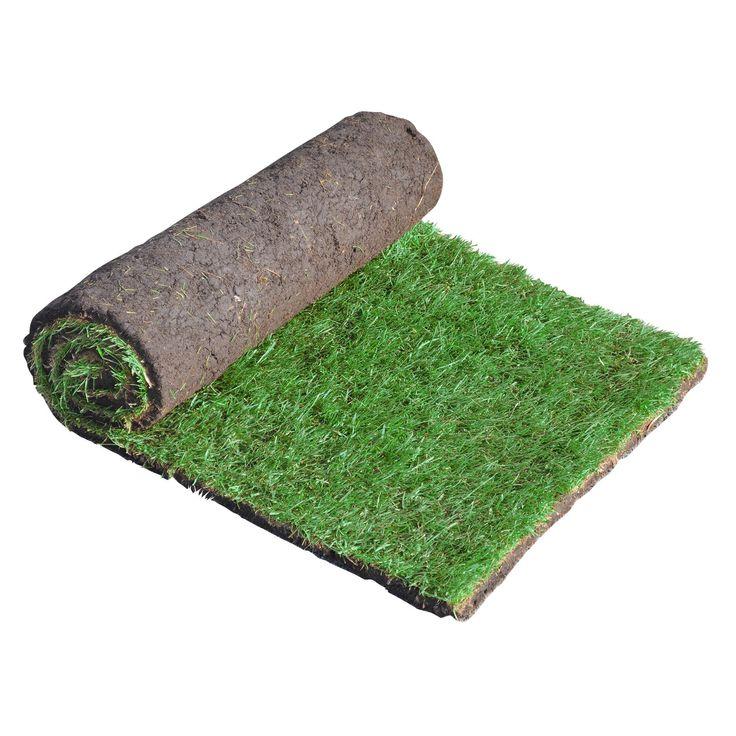 Q Lawns Lawn Turf (W)610mm (L)1370mm, Rolls Of 40 | Departments | DIY at B&Q
