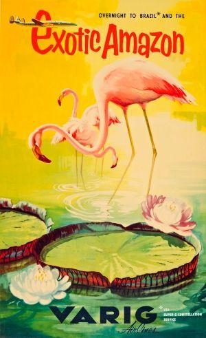 Amazon Brazil Varig Airlines Flamingoes, 1950s - original vintage poster listed on AntikBar.co.uk