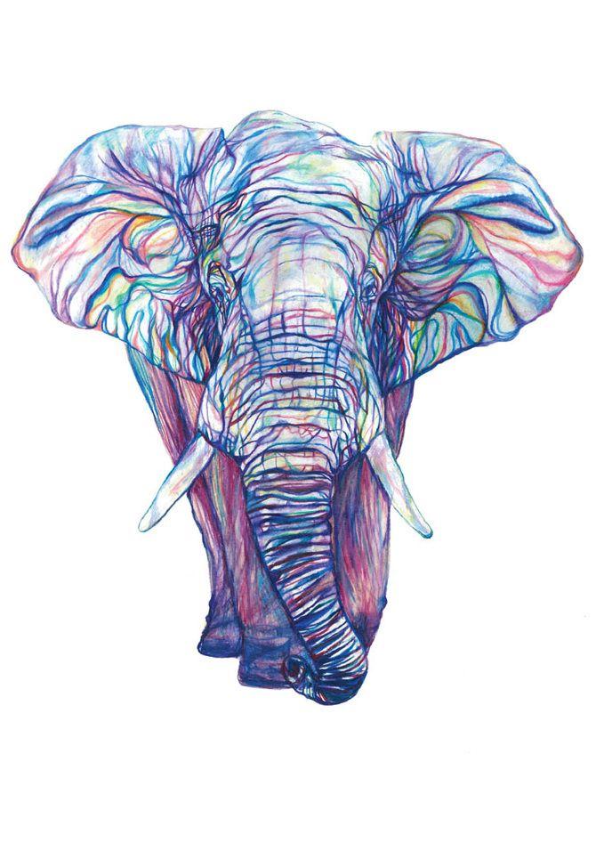 Claudine O'Sullivan Print, I want this elephant!!