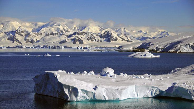 Anvers Island, Antarctica - , Antarctic Peninsula