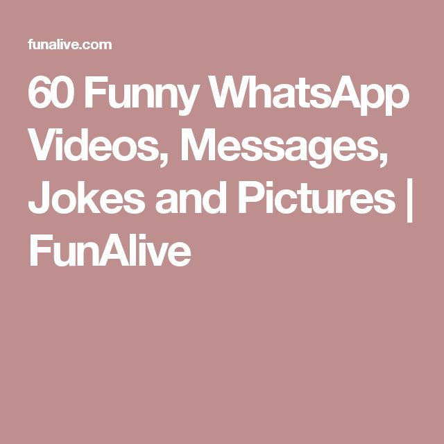 60 Funny WhatsApp Videos, Messages, Jokes and Pictures | FunAlive