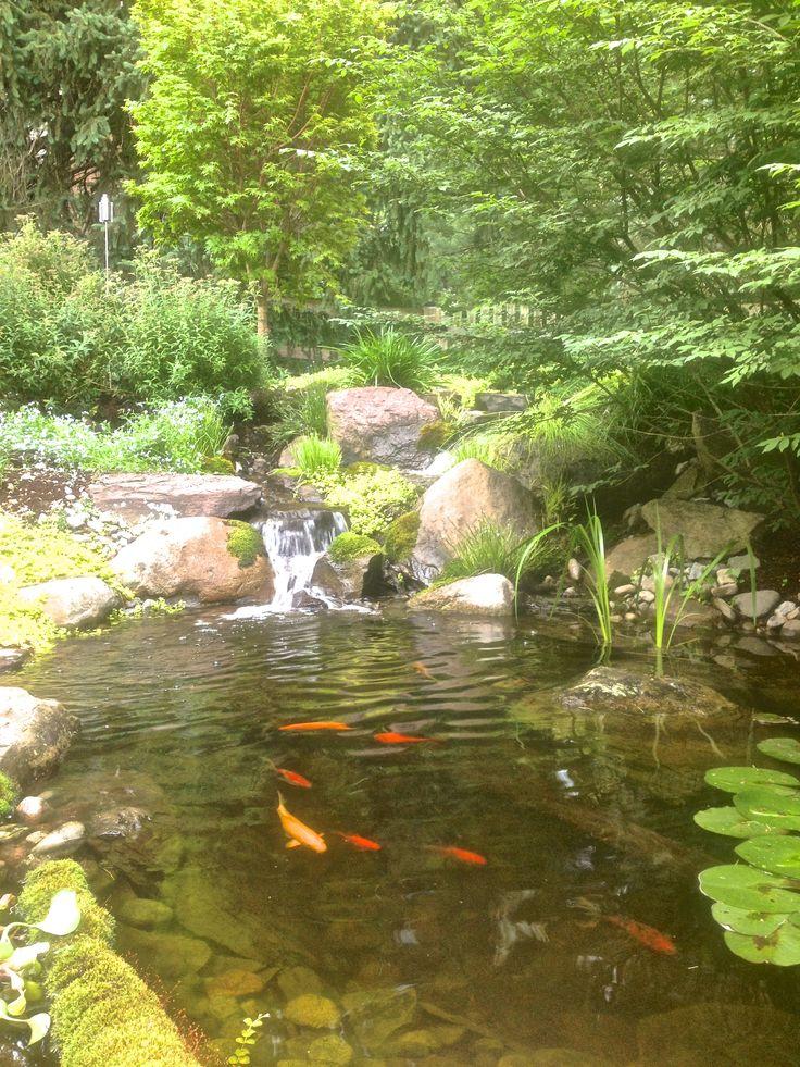 36 best backyard ponds fish ponds koi ponds for Koi pond pump installation