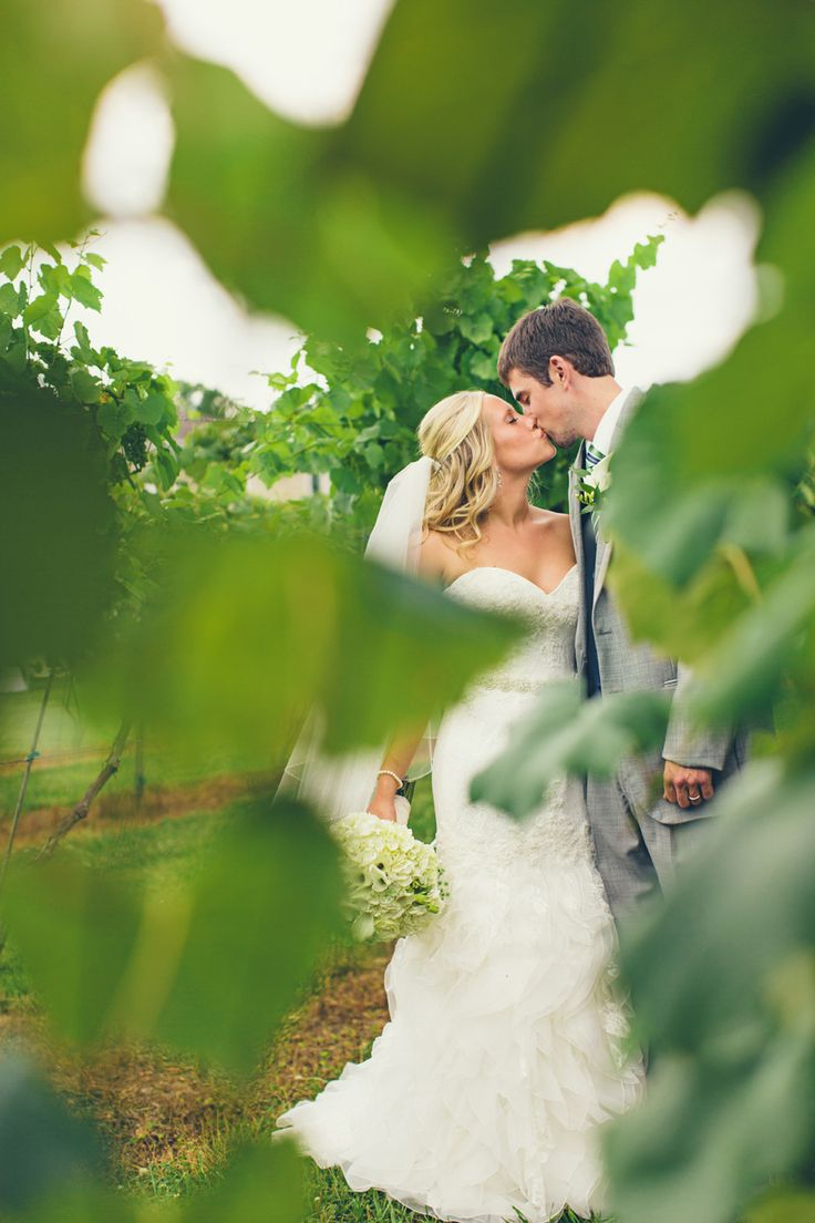 delmonaco winery wedding ideas photography, bride and groom vineyard