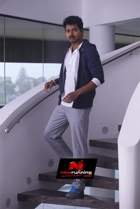 Vijay In Thalaiva