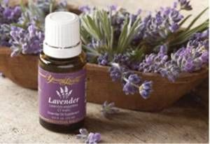 Lavender is great for calming the body.  Great for burns, stops itching, reduces swelling.  Lavender helps stop bleeding.  Lavender also alleviates the sypmtoms of allergies.