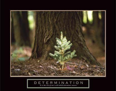 67 best Demotivational posters images on Pinterest