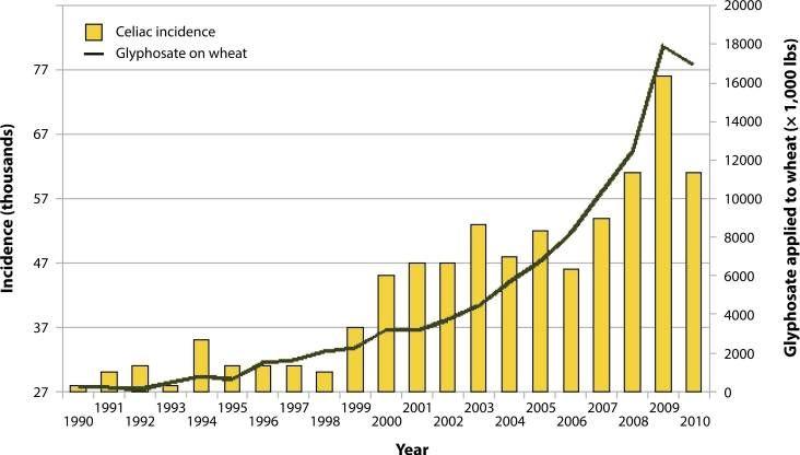 El glifosato pudiera ser la causa del aumento de diagnosticados con celiaquía o intolerancia al glutenCelíacos Informados | Celíacos Informados